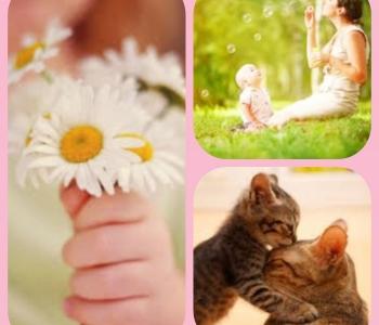 Emadepäeva tervitus Sõlekese perelt