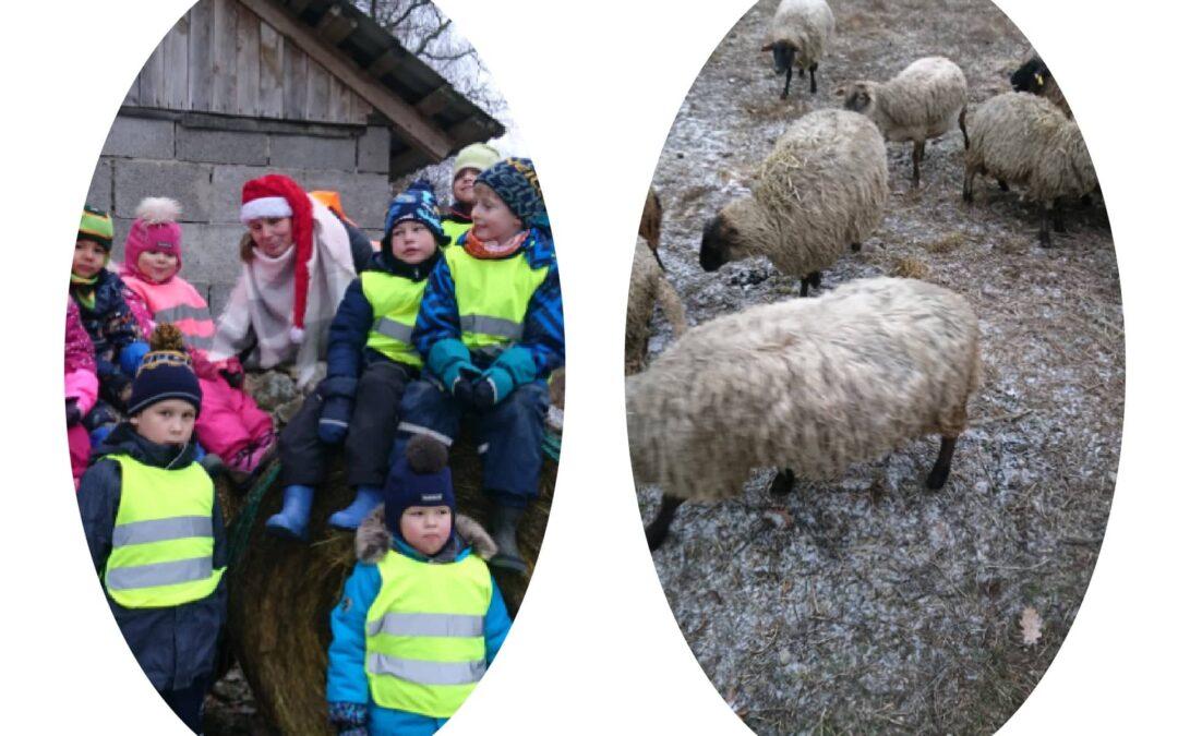 Peoleo rühm lammastel külas