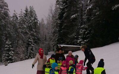 Peoleo rühma projekt Kes elab metsa sees?
